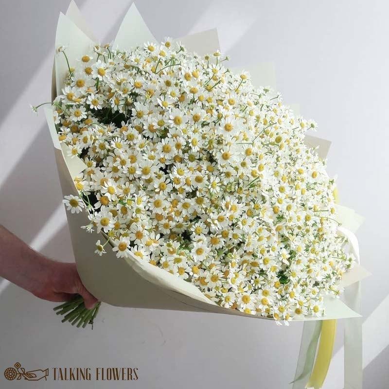 доставка цветов харьков Пышный букет из деревенских ромашек